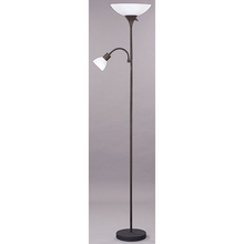 "Canarm IFL1013 - Floor, IFL10 ORB, 70""H 2 Light Floor Lamp, Frosted Glass, 100W Type A and 60W Type GC"