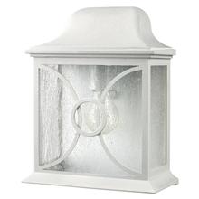 Canarm IOL9211 - Outdoor, IOL92 WH, 1 Bulb Outdoor Lantern, Frosted Glass, 60W Type A or B